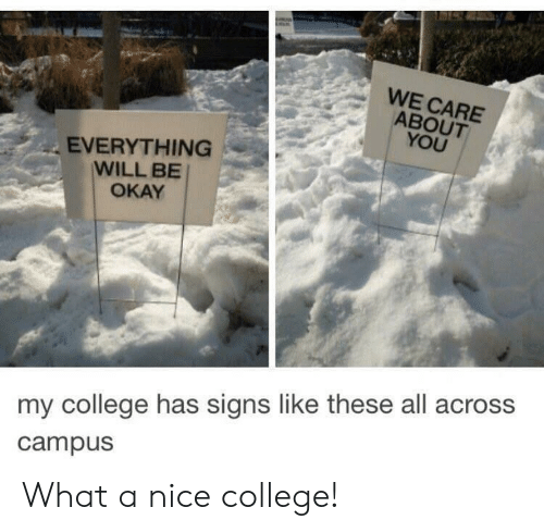 College, Okay, and Nice: WE CARE  ABOUT  YOU  EVERYTHING  WILL BE  OKAY  my college has signs like these all across  campus What a nice college!