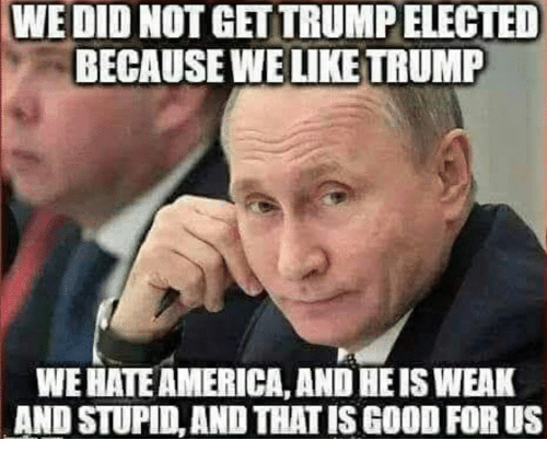 America, Good, and Trump: WE DID NOT GET TRUMP ELECTED  BECAUSE WE LIKE TRUMP  WE HATE AMERICA,AND HE IS WEAK  AND STUPID, AND THAT IS GOOD FOR US