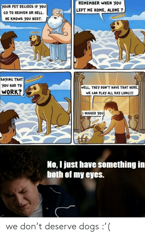 Dogs: we don't deserve dogs :'(