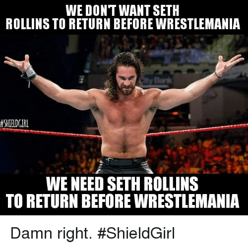 Memes, Seth Rollins, and 🤖: WE DONT WANT SETH  ROLLINS TO RETURN BEFORE WRESTLEMANIA  SHIELD GIRL  WE NEED SETH ROLLINS  TO RETURN BEFORE WRESTLEMANIA Damn right.  #ShieldGirl
