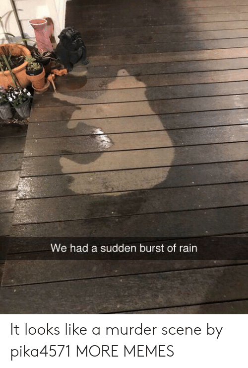 Dank, Memes, and Target: We had a sudden burst of rain It looks like a murder scene by pika4571 MORE MEMES