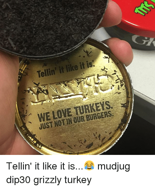Love, Memes, and Turkey: WE LOVE TURKEYS.  JUST NOTIN OUR BURGERS, Tellin' it like it is...😂 mudjug dip30 grizzly turkey