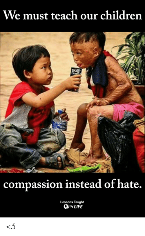 Children, Life, and Memes: We must teach our children  compassion instead of hate.  Lessons Taught  By LIFE <3