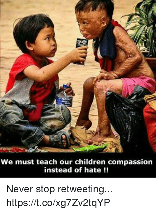 Children, Memes, and Compassion: We must teach our children compassion  instead of hate!! Never stop retweeting... https://t.co/xg7Zv2tqYP