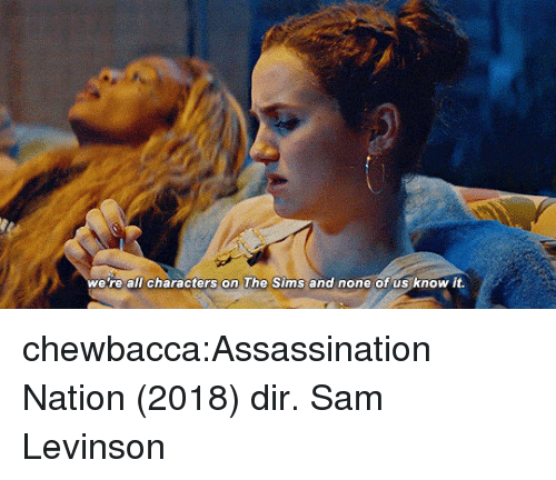 Assassination, Chewbacca, and Target: we re all characters on The Sims and none of us know it. chewbacca:Assassination Nation (2018) dir. Sam Levinson