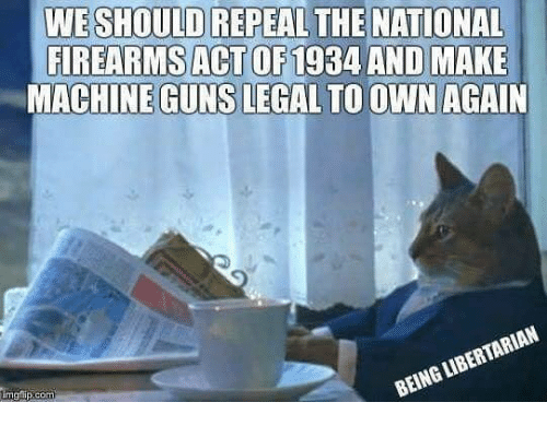 Guns, Memes, and Libertarian: WE SHOULD REPEAL THE NATIONAL  FIREARMS ACT OF1934 AND MAKE  MACHINE GUNS LEGAL TO OWN AGAIN  imgflip.com  BEING LIBERTARIAN