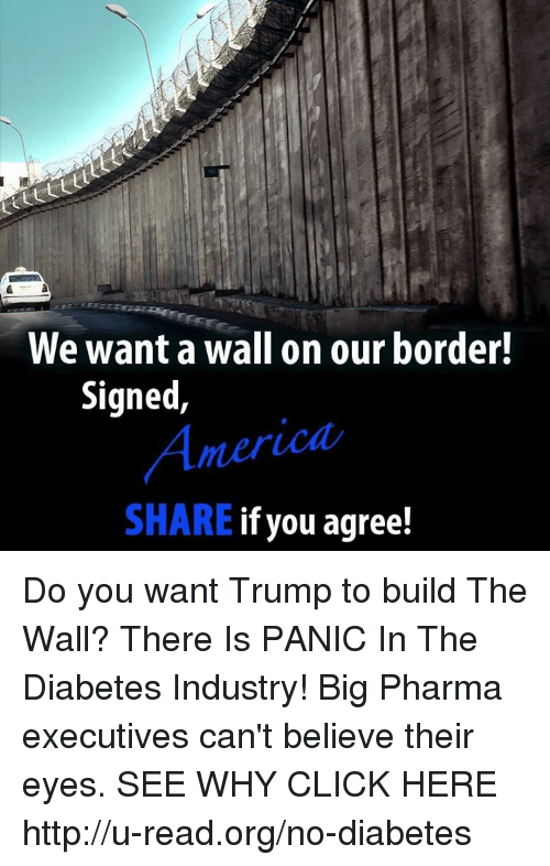 Click, Memes, and Diabetes: We want a wall on our border!  Signed  SHARE  if you agree! Do you want Trump to build The Wall?  There Is PANIC In The Diabetes Industry! Big Pharma executives can't believe their eyes. SEE WHY CLICK HERE ►► http://u-read.org/no-diabetes