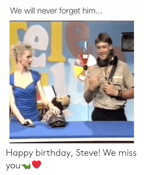 Birthday, Memes, and Happy Birthday: We will never forget him... Happy birthday, Steve! We miss you🐊❤️
