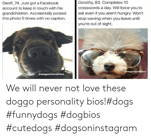 Will Never: We will never not love these doggo personality bios!#dogs #funnydogs #dogbios #cutedogs #dogsoninstagram