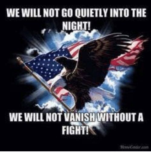 Memes, Fight, and 🤖: WE WILL NOT GO QUIETLYINTO THE  NIGHT!  WE WILL NOT VANISH WITHOUTA  FIGHT!