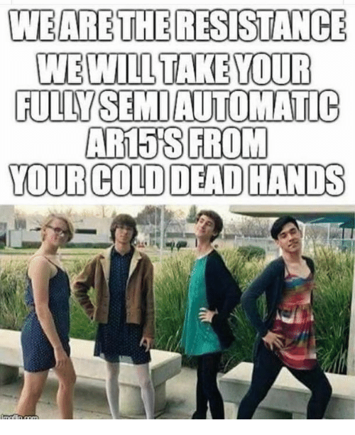 Memes, Cold, and 🤖: WEARETHERESISTANCE  WEWILL TAKE YOUR  FULLYSEMIAUTOMATIC  AR15'SFROM  YOUR COLD DEAD HANDS