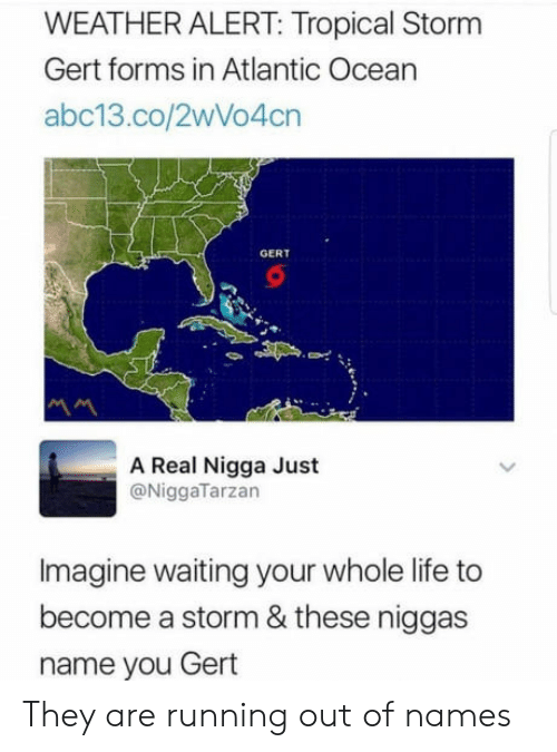 Life, Abc13, and Ocean: WEATHER ALERT: Tropical Storm  Gert forms in Atlantic Ocean  abc13.co/2wVo4cn  GERT  A Real Nigga Just  @NiggaTarzan  Imagine waiting your whole life to  become a storm & these niggas  name you Gert They are running out of names