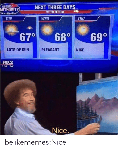 Metro: Weather  AUTHORITY  AccuWeather  NEXT THREE DAYS  METRO DETROIT  THU  TUE  WED  670  69°  68°  LOTS OF SUN  PLEASANT  NICE  FOX2  6:32 54  Nice. belikememes:Nice