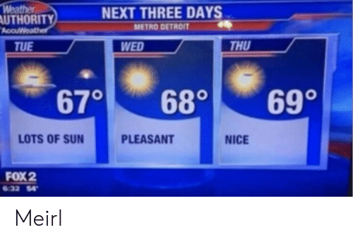 Metro: Weather  AUTHORITY  AccuWeather  NEXT THREE DAYS  METRO DETROIT  THU  WED  TUE  690  670  680  LOTS OF SUN  PLEASANT  NICE  FOX 2  6.32 54 Meirl