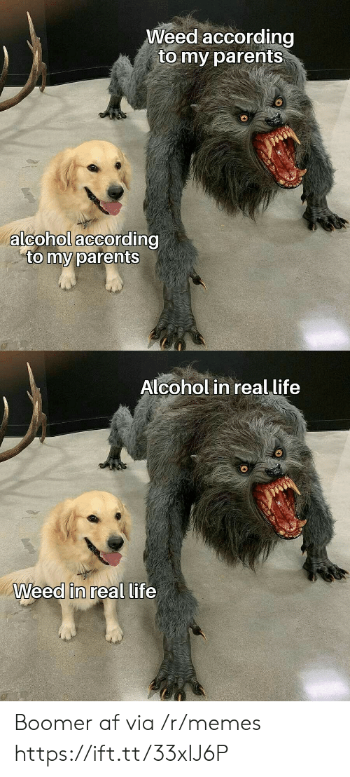 According: Weed according  to my parents  alcohol according  to my parents  Alcohol in real life  Weed in real life Boomer af via /r/memes https://ift.tt/33xIJ6P