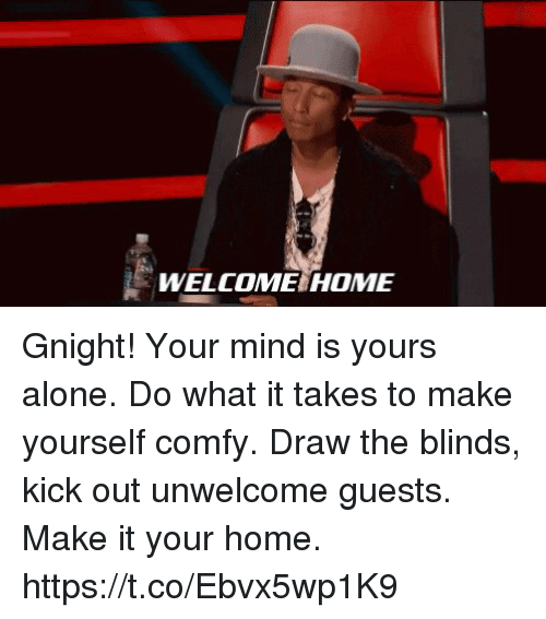 Being Alone, Memes, and Home: WELCOME HOME Gnight! Your mind is yours alone. Do what it takes to make yourself comfy. Draw the blinds, kick out unwelcome guests. Make it your home. https://t.co/Ebvx5wp1K9