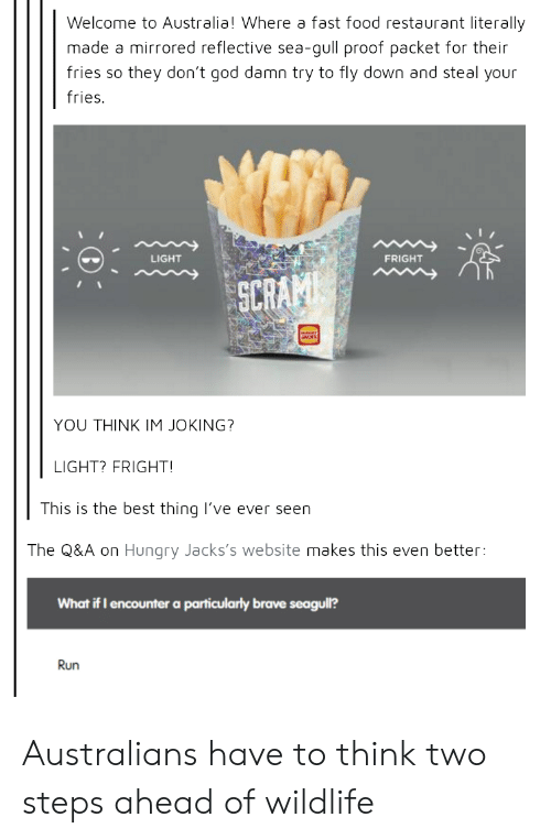 Fast Food, Food, and God: Welcome to Australia! Where a fast food restaurant literally  made a mirrored reflective sea-gull proof packet for their  fries so they don't god damn try to fly down and steal your  fries.  LIGHT  FRIGHT  SCR  YOU THINK IM JOKING?  LIGHT? FRIGHT  This is the best thing lI've ever seen  The Q&A on Hungry Jacks's website makes this even better:  What if I encounter a particularly brave seagull?  Run Australians have to think two steps ahead of wildlife