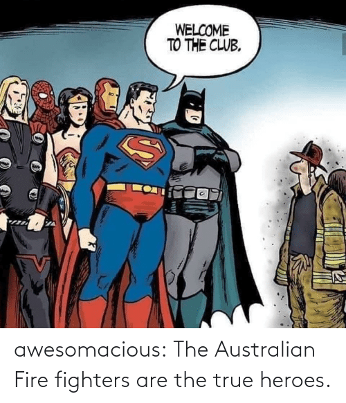 The Club: WELCOME  TO THE CLUB. awesomacious:  The Australian Fire fighters are the true heroes.