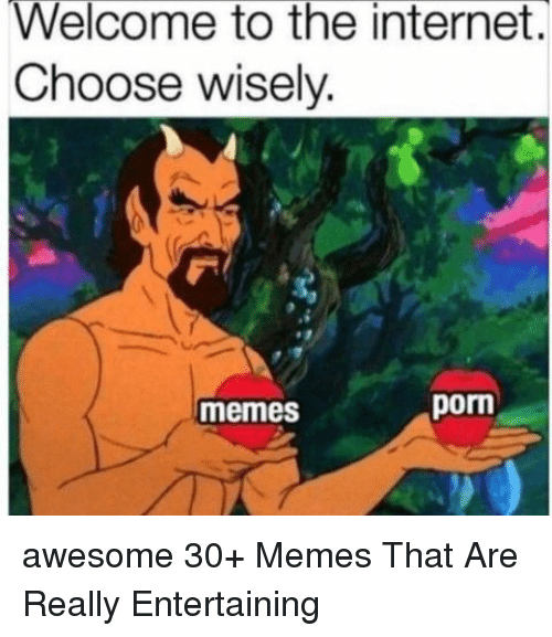 Internet, Memes, and Porn: Welcome to the internet.  Choose wisely.  memes  porn awesome 30+ Memes That Are Really Entertaining
