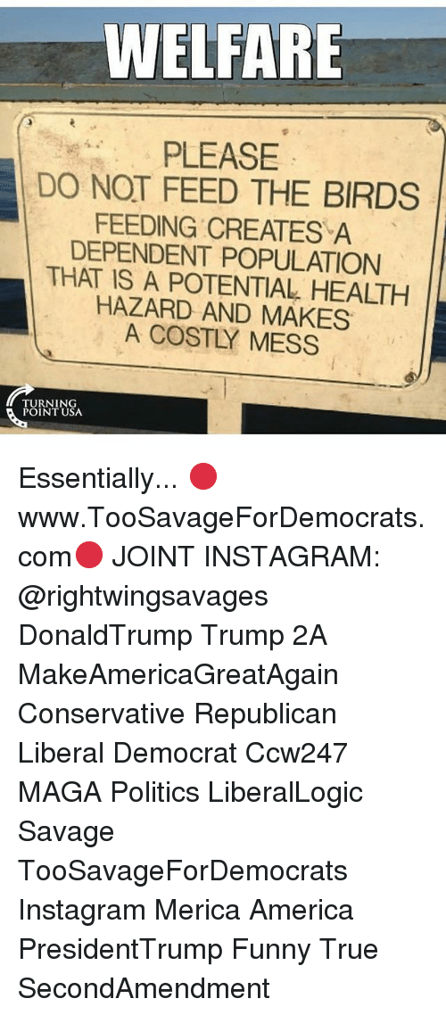 America, Funny, and Instagram: WELFARE  PLEASE  DO NOT FEED THE BIRDS  FEEDING CREATES A  DEPENDENT POPULATION  THAT IS A POTENTIAL HEALTH  HAZARD AND MAKES  A COSTLY MESS  TURNING  POINT USA Essentially... 🔴www.TooSavageForDemocrats.com🔴 JOINT INSTAGRAM: @rightwingsavages DonaldTrump Trump 2A MakeAmericaGreatAgain Conservative Republican Liberal Democrat Ccw247 MAGA Politics LiberalLogic Savage TooSavageForDemocrats Instagram Merica America PresidentTrump Funny True SecondAmendment