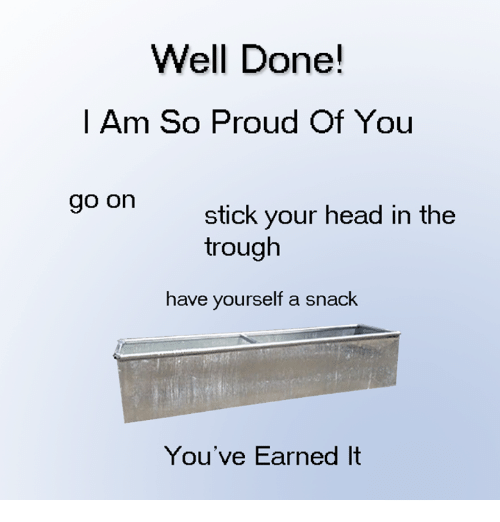 So Proud Of You: Well Done!  I Am So Proud Of You  go on  stick your head in the  trough  have yourself a snack  You've Earned It