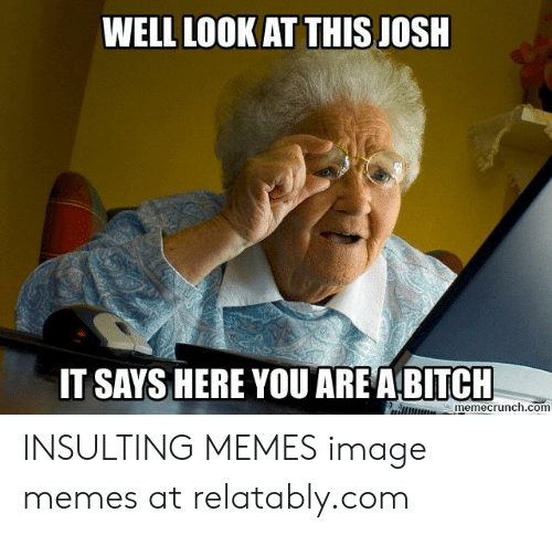 Bitch, Memes, and Image: WELL LOOK AT THIS JOSH  ARE A BITCH  IT SAYS HERE YOU  R memecrunch.com INSULTING MEMES image memes at relatably.com