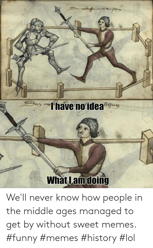 Managed: We'll never know how people in the middle ages managed to get by without sweet memes. #funny #memes #history #lol