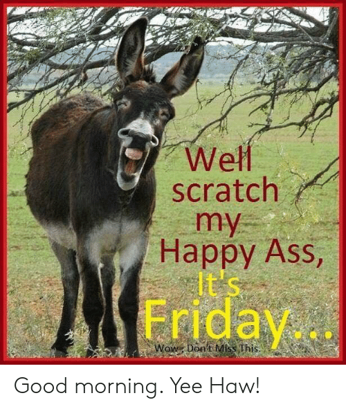 Ass, Dank, and Friday: Well  scratch  Happy Ass,  Friday  Dont Miss This. Good morning. Yee Haw!