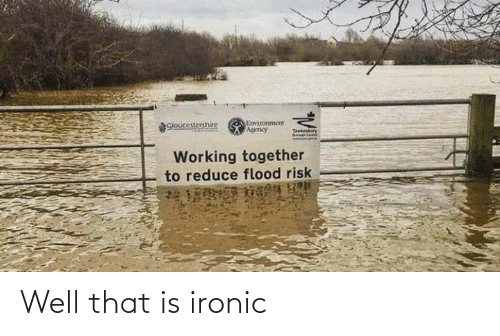 Ironic: Well that is ironic