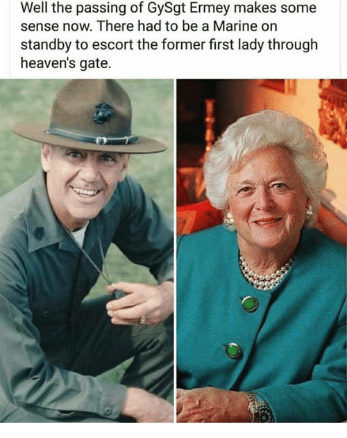 Memes, 🤖, and Gate: Well the passing of GySgt Ermey makes some  sense now. There had to be a Marine on  standby to escort the former first lady through  heaven's gate.