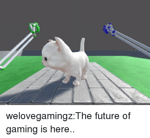Future, Tumblr, and Blog: welovegamingz:The future of gaming is here..