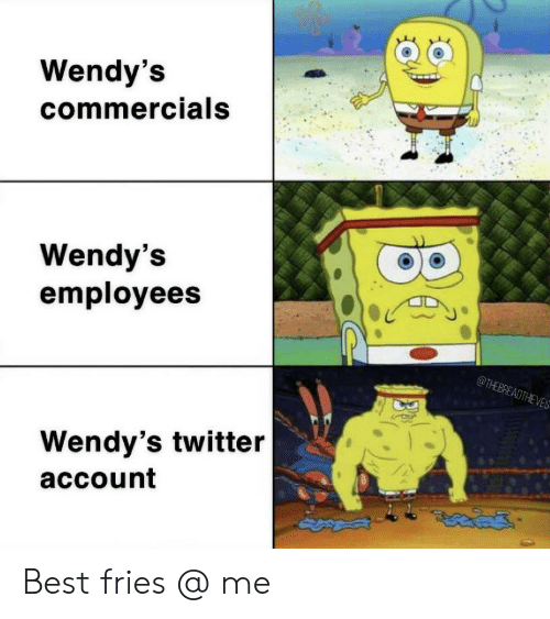 wendys: Wendy's  commercials  Wendy's  employees  @THEBREADTHEVES  Wendy's twitter  account Best fries @ me