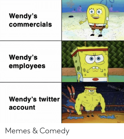 wendys: Wendy's  commercials  Wendy's  employees  @THEBREADTHEVES  Wendy's twitter  account Memes & Comedy