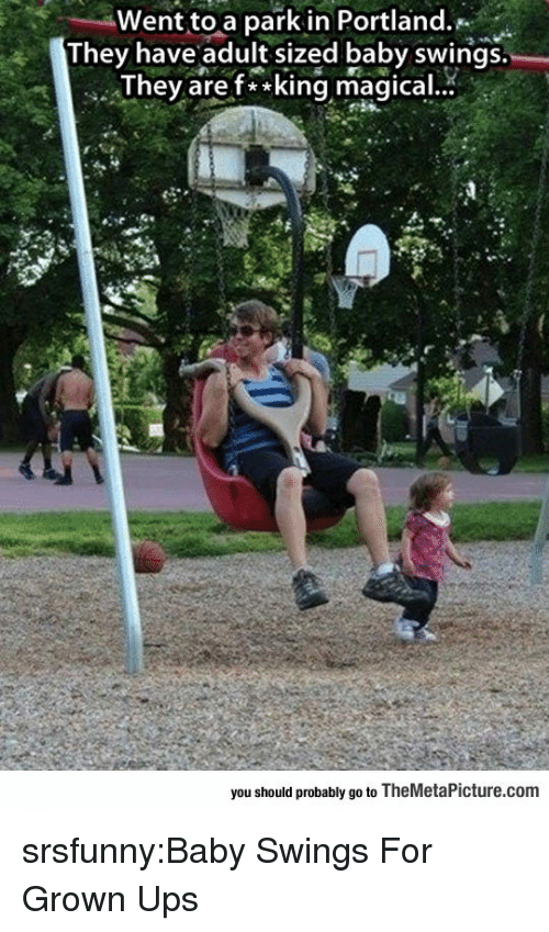 Tumblr, Ups, and Blog: Went to a park in Portland.  They have adult sized baby swings.  Thev aref**king magical.  you should probably go to TheMetaPicture.com srsfunny:Baby Swings For Grown Ups