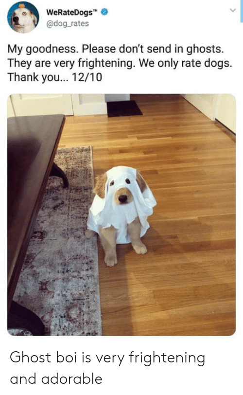 Dogs, Thank You, and Ghost: WeRateDogs  @dog.rates  My goodness. Please don't send in ghosts.  They are very frightening. We only rate dogs.  Thank you.. 12/10 Ghost boi is very frightening and adorable