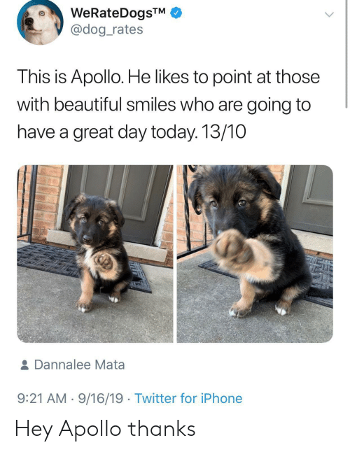 Beautiful, Iphone, and Twitter: WeRateDogsTM  @dog_rates  This is Apollo. He likes to point at those  with beautiful smiles who are going to  have a great day today. 13/10  & Dannalee Mata  9:21 AM 9/16/19 Twitter for iPhone Hey Apollo thanks