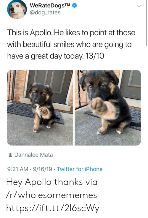 Beautiful, Iphone, and Twitter: WeRateDogsTM  @dog_rates  This is Apollo. He likes to point at those  with beautiful smiles who are going to  have a great day today. 13/10  & Dannalee Mata  9:21 AM 9/16/19 Twitter for iPhone Hey Apollo thanks via /r/wholesomememes https://ift.tt/2l6scWy