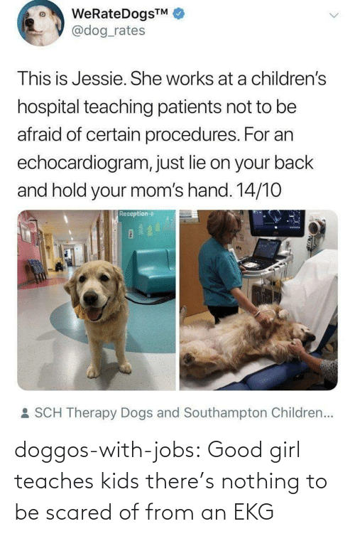 scared: WeRateDogsTM  @dog_rates  This is Jessie. She works at a children's  hospital teaching patients not to be  afraid of certain procedures. For an  echocardiogram, just lie on your back  and hold your mom's hand. 14/10  Reception->  : SCH Therapy Dogs and Southampton Children... doggos-with-jobs:  Good girl teaches kids there's nothing to be scared of from an EKG