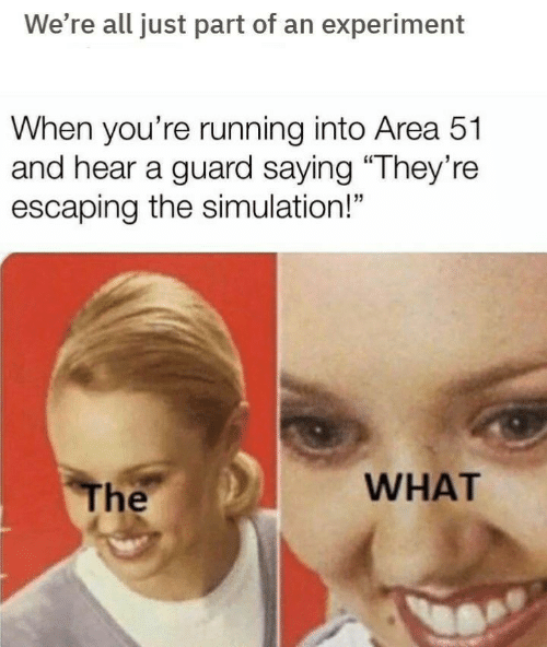 """Running, Area 51, and All: We're all just part of an experiment  When you're running into Area 51  and hear a guard saying """"They're  escaping the simulation!""""  WHAT  The"""