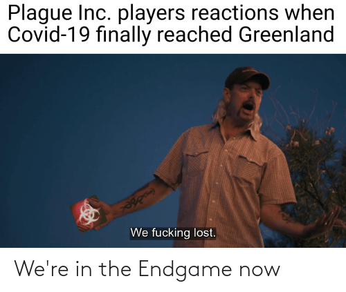 endgame: We're in the Endgame now