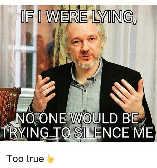 Memes, 🤖, and Silencer: WERE LAMONGD  NO ONE WOULD BE  TRYING TO SILENCE ME Too true☝