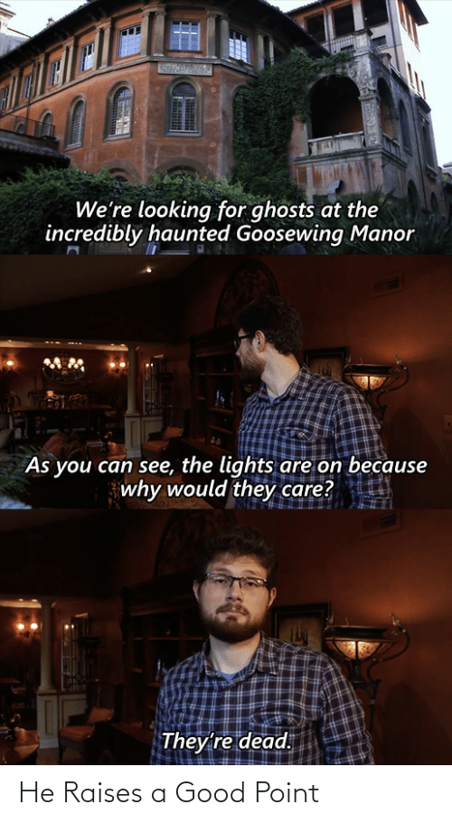 ghosts: We're looking for ghosts at the  incredibly haunted Goosewing Manor  As you can see, the lights are on because  why would they care?  They're dead. He Raises a Good Point