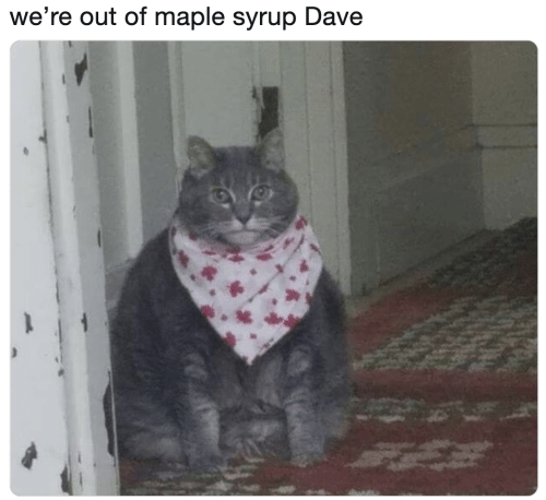 maple: we're out of maple syrup Dave