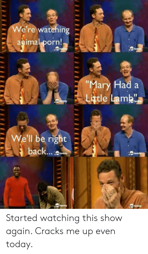 "Porn, Today, and Lamb: -We're watehing  apima! porn!  ar  ad a  Little Lamb""  I1  : We'll be right  8  ack... t Started watching this show again. Cracks me up even today."