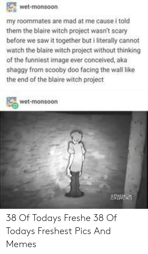 Memes, Saw, and Scooby Doo: wet-monsoon  my roommates are mad at me cause i told  them the blaire witch project wasn't :  before we saw it together but i literally cannot  watch the blaire witch project without thinking  of the funniest image ever conceived, aka  shaggy from scooby doo facing the wall like  the end of the blaire witch project  wet-monsoon  eftaue: 38 Of Todays Freshe 38 Of Todays Freshest Pics And Memes