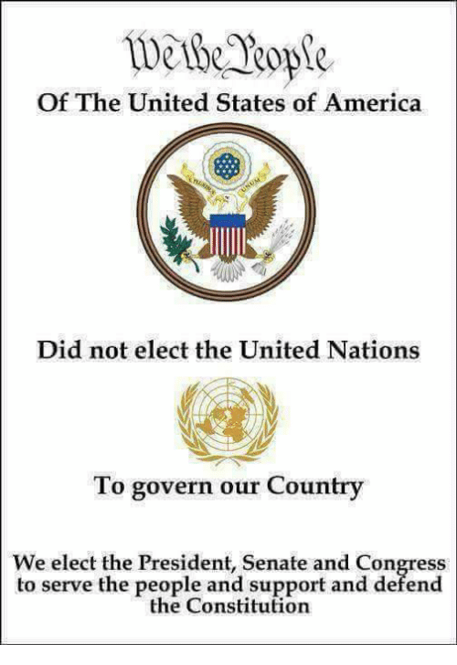 America, Memes, and Constitution: wethk Rope  Of The United States of America  Did not elect the United Nations  To govern our Country  We elect the President, Senate and Congress  to serve the people and support and defend  the Constitution