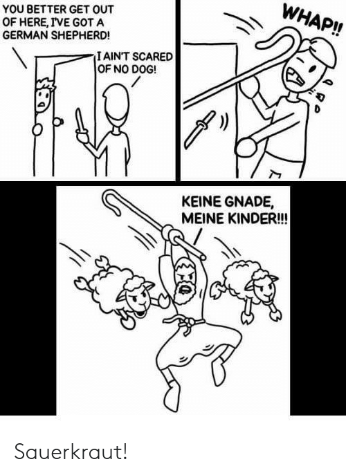 German Shepherd, Got, and Dog: WHAP!!  YOU BETTER GET OUT  OF HERE, IVE GOT A  GERMAN SHEPHERD!  IAINT SCARED  OF NO DOG!  KEINE GNADE,  MEINE KINDER!! Sauerkraut!