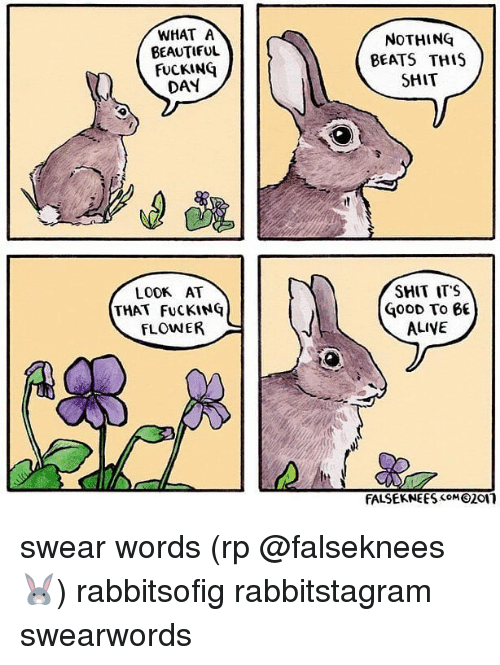 Alive, Beautiful, and Fucking: WHAT A  BEAUTIFUL  FUCKING  DAY  NOTHING  BEATS THIS  SHIT  LOOK AT  THAT FuCKING  FLOWER  SHIT IT'S  GoOD To 6  ALIVE  FALSEKNEES 21n swear words (rp @falseknees 🐰) rabbitsofig rabbitstagram swearwords