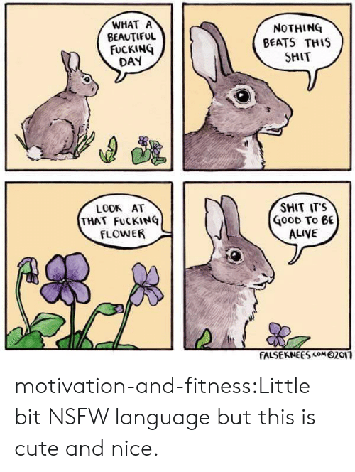 Alive, Beautiful, and Cute: WHAT A  BEAUTIFUL  FUCKING  DAY  NOTHING  BEATS THIS  SHIT  SHIT ITS  LOOK AT  THAT FuCKING  FLOWER  oOD To 6E  ALIVE  FALSEKNE ES com 0201 motivation-and-fitness:Little bit NSFW language but this is cute and nice.