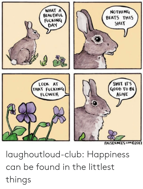Shit Fucking: WHAT A  BEAUTIFUL  NOTHING  BEATS TH1S  SHIT  FUCKING  DAY  LOOK AT  THAT FuCKINQ  FLOWER  SHIT ITS  GoOD To 6  ALIVE laughoutloud-club:  Happiness can be found in the littlest things